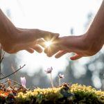 Hands In The Sunlight - Healing From Complex Trauma
