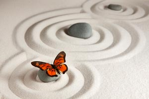Butterfly representing a Schema Therapy journey