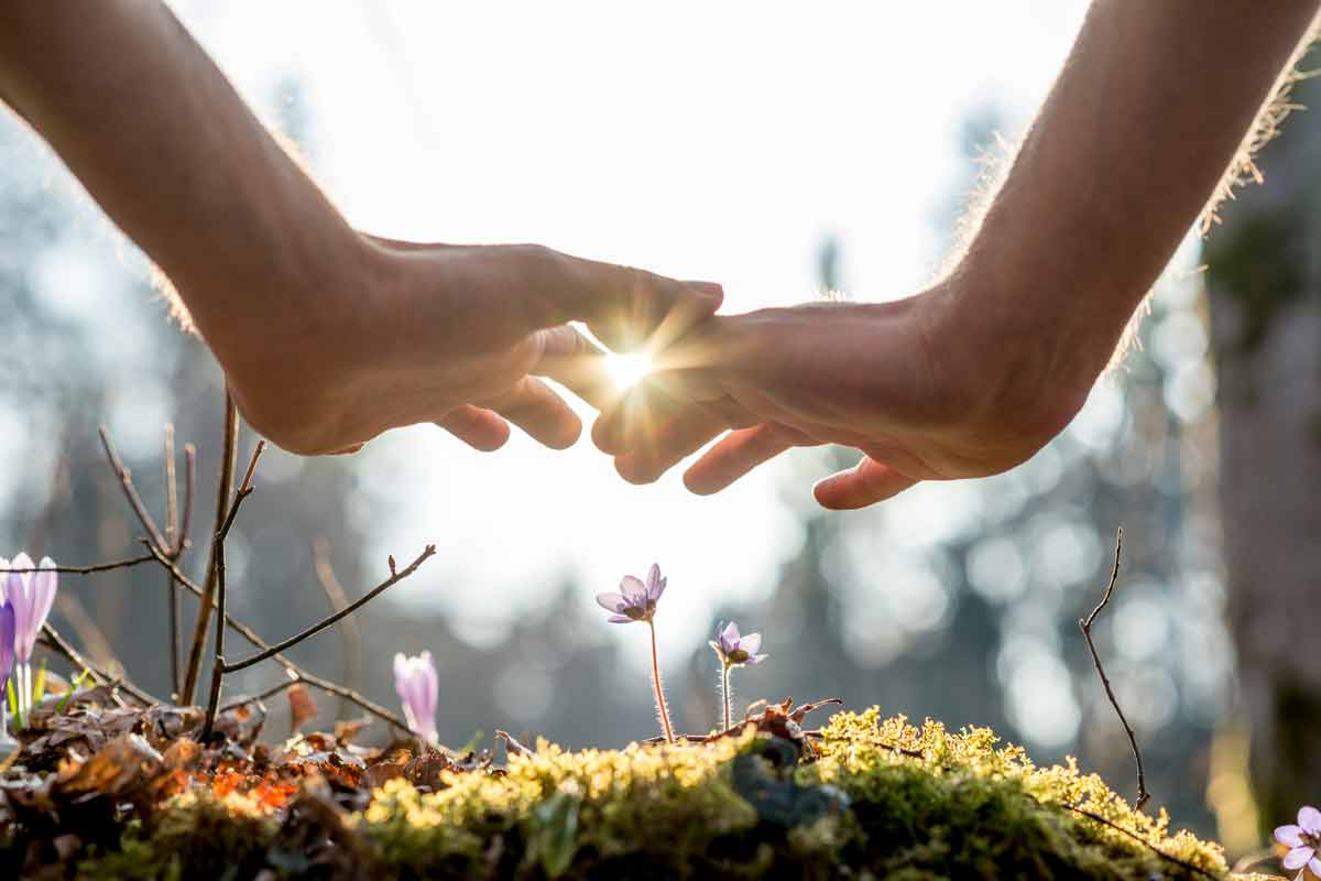 Hands In The Sunlight - Healing From Stress and Trauma